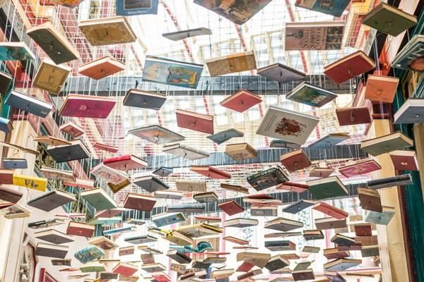 Actus des bibliothèques
